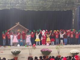 Christmas Programme Junior
