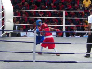 Boxing 2019 12