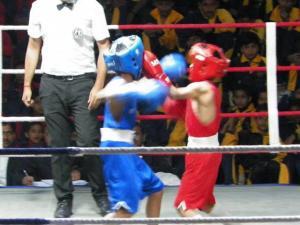 Boxing 2019 18