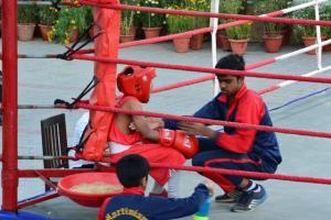 Boxing 2019 3