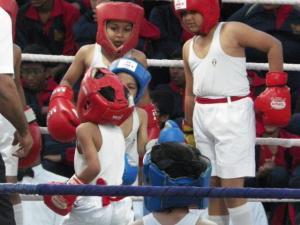 Boxing 2019 4