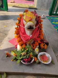 Maha Shivrati 2019 15